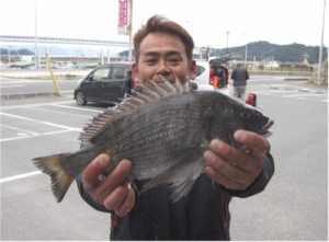 0121-tamura-tinu40cm-b