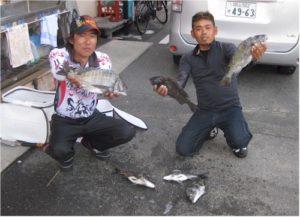 0514-katayama-tamura-tinu42cm-b