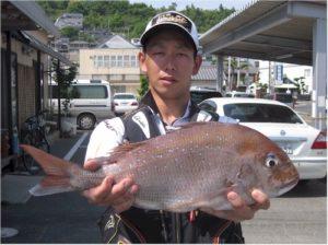 0514-kurihara-madai52.5cm-b